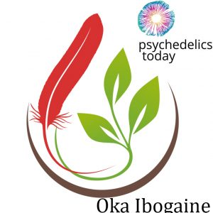 Oka Ibogaine Therapy - David Stetson