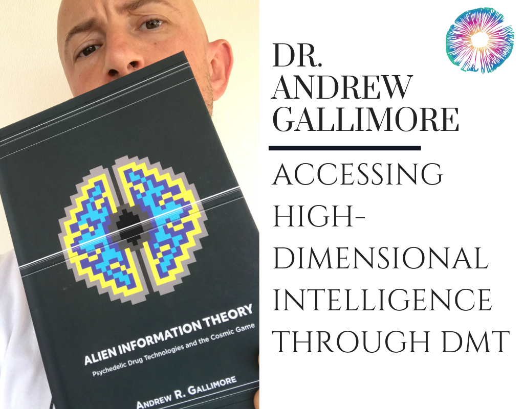 Dr. Andrew Gallimore